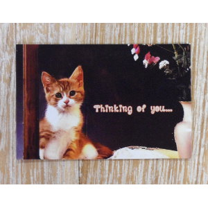 Magnet chat Thinking of you