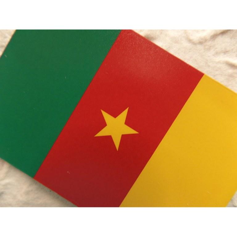 Aimant drapeau Cameroun