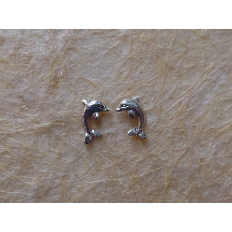 Clous d'oreilles dauphins