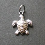 Pendentif petite tortue de mer