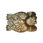 Tortue Moluques M