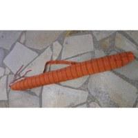 Housse 150 didgeridoo rayée Lumbini 5