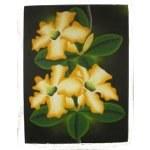 Tableau fleur d'hibiscus