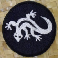 Patch salamandre blanche