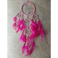 Dreamcatcher pahta rose