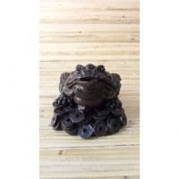 La grenouille de la fortune Feng shui