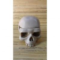 Cendrier blanc crâne uni amovible