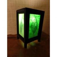 Lampe feuille verte