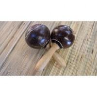 Paires de maracas coco color
