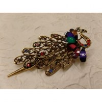 Pince strass le paon multicolor