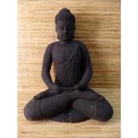 Bouddha en méditation dhyana