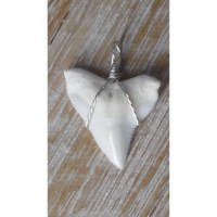 Pendentif 6 dent de requin blanc