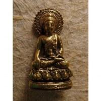 Miniature Bouddha médecin auréolé