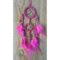 Dreamcatcher rose nonpa