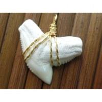 Pendentif dent de requin tigre 1.4