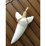 Pendentif dent de requin mako 6.4