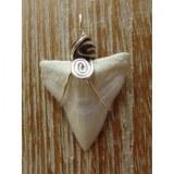 Pendentif dent de requin B4