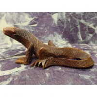 Sculpture dragon de Komodo