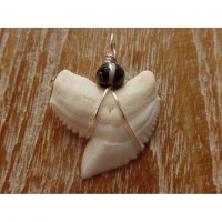 Pendentif petite dent de requin T3