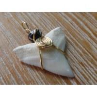 Pendentif dent de requin B11