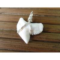 Pendentif petite dent de requin tigre