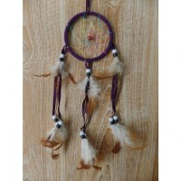 Dreamcatcher owa prune