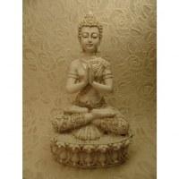 Bouddha anjali mudra